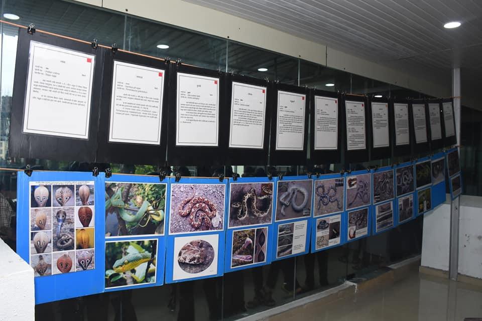 Snake Exhibition
